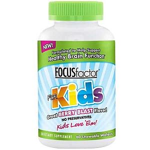 Focus Factor For Kids